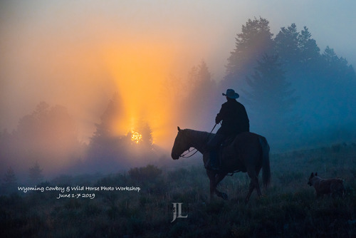 Wyoming Cowboy and wild horse photo workshop