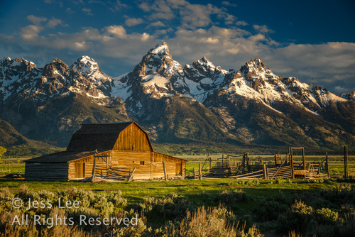 Teton Barn at sunrise