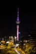 Sky Tower Auckland.jpg