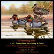DS50 2015 PA Duck Stamp Print 72(1).jpg