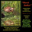 G130 Marsh Stalker - American Bittern  96.jpg
