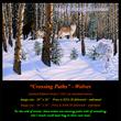 G139 Crossing Paths - Wolves 72.jpg