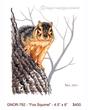 GNOR-792-Fox Squirrel -  400.jpg