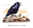 GNOR-794-Fish Crow.jpg