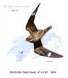 GNOR-804 CommonNIghthawk J.jpg
