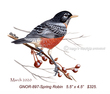 GNOR-897-Spring Robin  325(1).jpg
