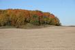 Autumn in Sheboygan Wisconsin 2020 II.jpg