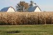 Illinois Farm at Sunrise.jpg