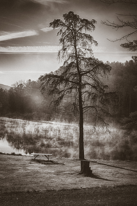UP-39692(1).jpg :: A picnic table and tree watching the sun rise and steam off a lake in sepia.