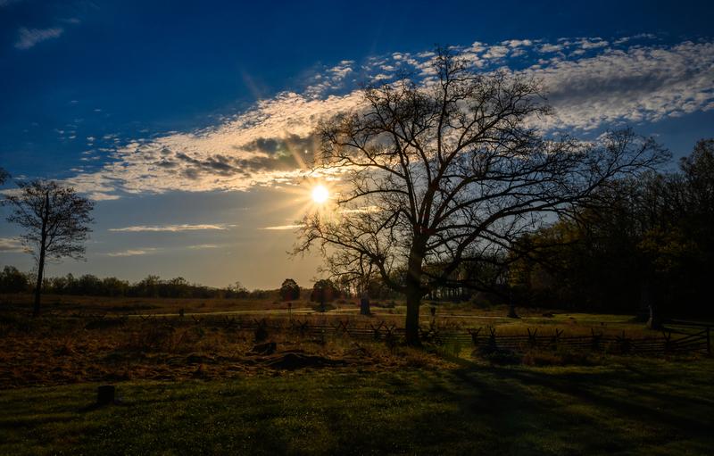 UP6_5216.jpg :: A lone tree near the Wheatfield in Gettysburg as the sun rises behind it.