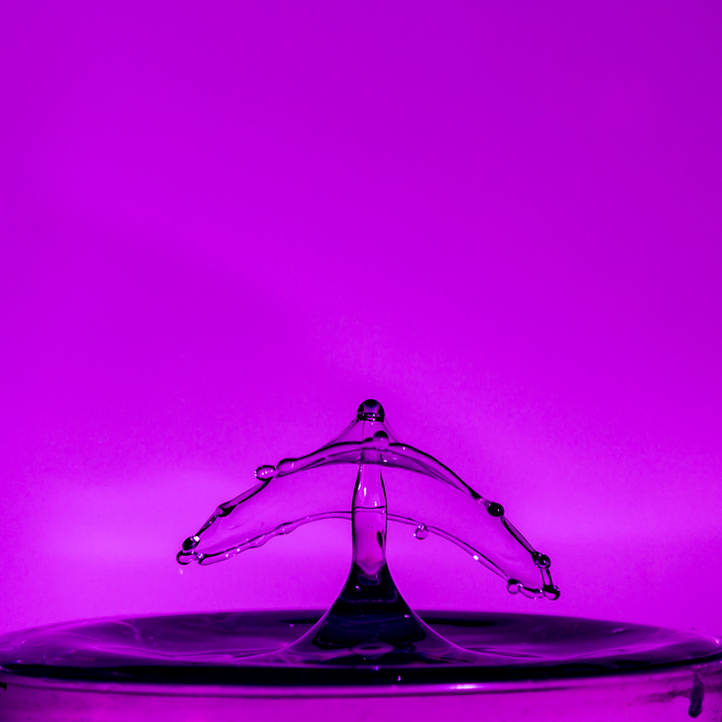 UP6_5533.jpg :: Water drop collision with a wide brime hat on.                                             #waterdrop #waterart #purple, #photooftheday, #drop, #water