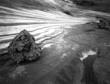 Asteroid Belt.jpg