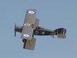 BRISTOL F2B FIGHTER D8096 G-AEPH  P8059162.jpg