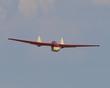 FAUVEL AV-36 GLIDER P5082203.jpg