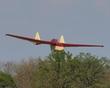FAUVEL AV-36 GLIDER P5082205.jpg