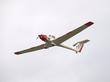GROB G-109B VIGILANT ZH118 P7201375(1).jpg