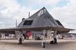 LOCKHEED F-117 NIGHTHAWK RIAT 2003 036(1).jpg