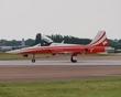 NORTHROP F-5 TIGER J-3081 PATROUILLE SUISSE P1012093(1).jpg