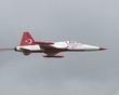 NORTHROP F-5 TIGER TURKISH STARS 15 P7107747(1).jpg