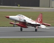 NORTHROP F-5 TIGER TURKISH STARS 16 P7107439(1).jpg