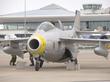 SAAB J29F TUNNAN SE-DXB 10 P9094982(1).jpg