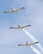 TEXAN TOP CLASS I-7736 1 I-8382 3 I-8942 4 WE FLY TEAM P7158140.jpg