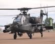 WESTLAND APACHE 95580 UNITED STATES ARMY P1018077(1).jpg
