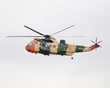 WESTLAND SEA KING RS-02 P1010375(1).jpg