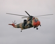WESTLAND SEA KING RS-02 P1010387(1).jpg