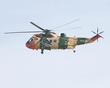 WESTLAND SEA KING RS-02 P1011681(1).jpg