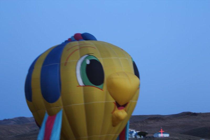 IMG_0309.jpg :: 2013 Reno Hot Air Balloon Race