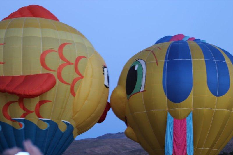 IMG_0311.jpg :: 2013 Reno Hot Air Balloon Race