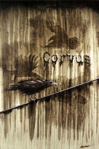 THE CORVUS.jpg