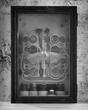 Cabinet of Curiosities II.jpg