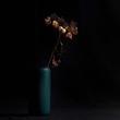 Still Life With Winter Hydrangea.jpg
