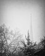 Untitled Snowfall.jpg