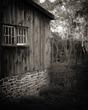 Autumn Barn Study.jpg