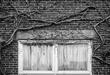 Quarantine (Two Curtained Windows).jpg