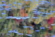 0126 VT Pond Reflections.jpg