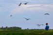 NL17L002 BirdBoy.jpg