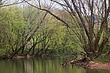 Red River in the Spring m.jpg