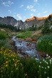 alpine stream early morning 0709_MG_5351 m.jpg