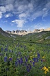 american basin with clouds m.jpg