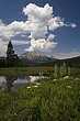 clouds & moon past Kebler pass m.jpg