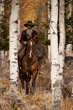 cowboy and horse in the aspens 0909_MG_6772 m.jpg