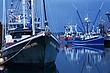 newport harbor m.jpg