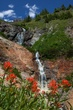 paintbrush and waterfalls 0709 _MG_4783 m.jpg