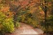 road through fall color 906 .2 m.jpg