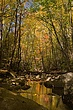 smokys stream fall reflections m VT1C9708.jpg