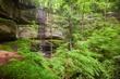 springtime cantwell cliffs 0510 0A1G5153 m.jpg